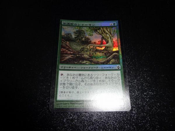 FOIL/永遠樹のシャーマン/Everbark Shaman/モーニングタイド/日本語版/MTG1枚_画像1