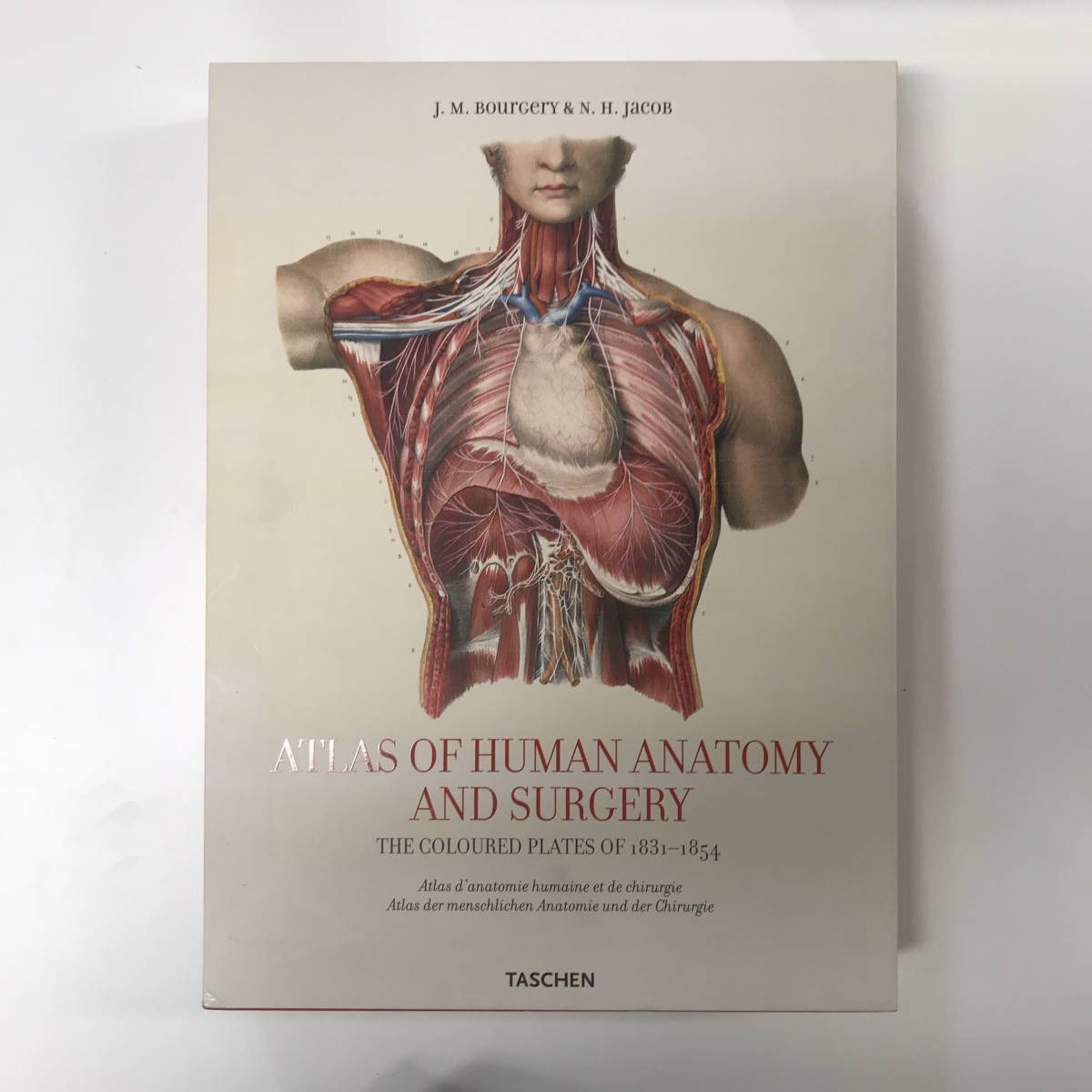 Atlas of Human Anatomy and Surgery (25th Anniversary Special Edtn) yg00211_e9