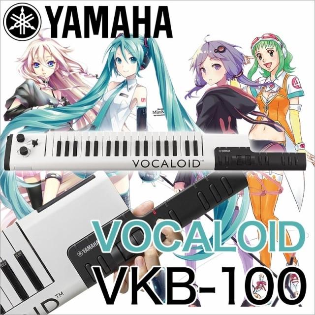 ボーカロイドキーボード vkb100