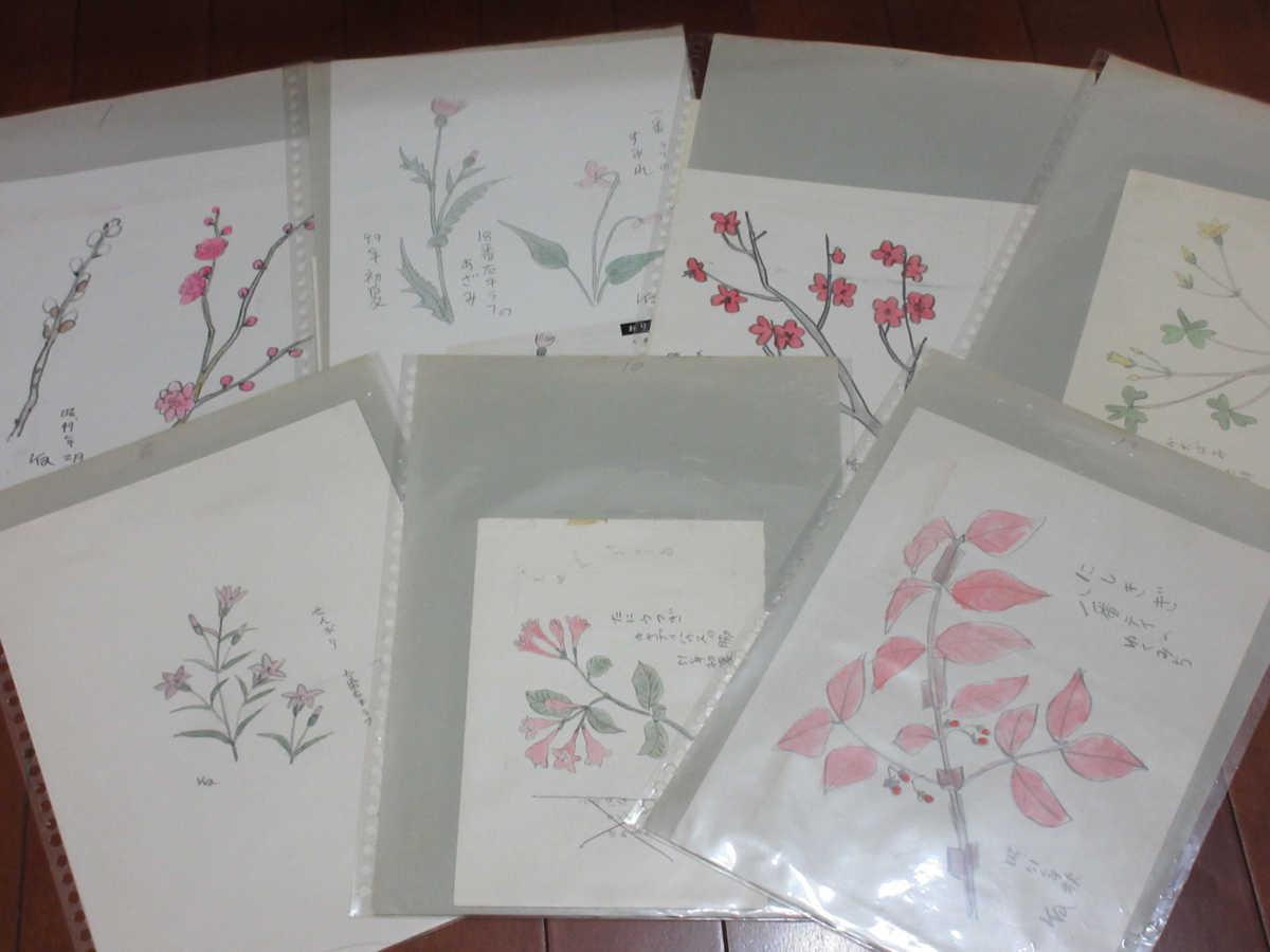 ●風間完 水彩画 挿絵 おりおりの花 シート 12枚 ① 紅梅 すみれ 桔梗 等 b74