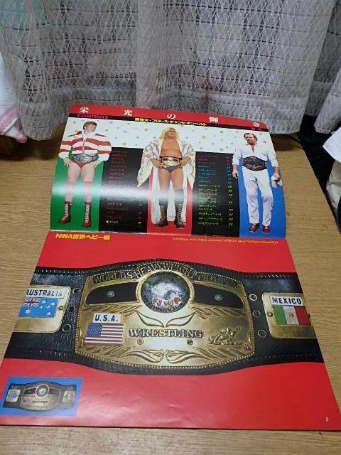 栄光の輝き プロレスチャンピオンベルト写真集