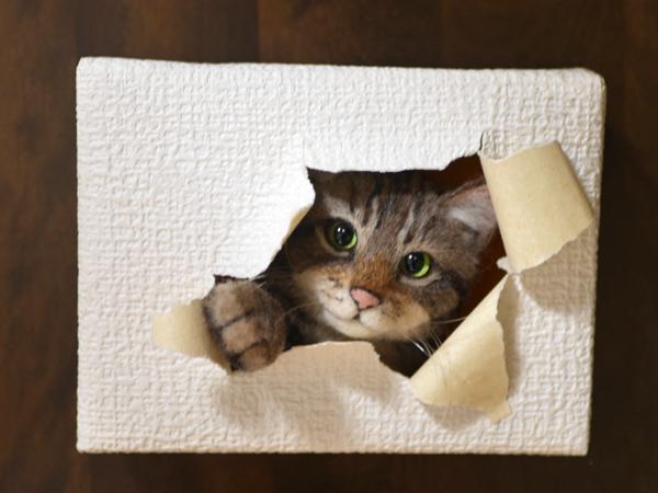 ★銀★ 羊毛フェルト 猫 ハンドメイド キジトラ猫 壁から覗く猫 壁掛け _画像4
