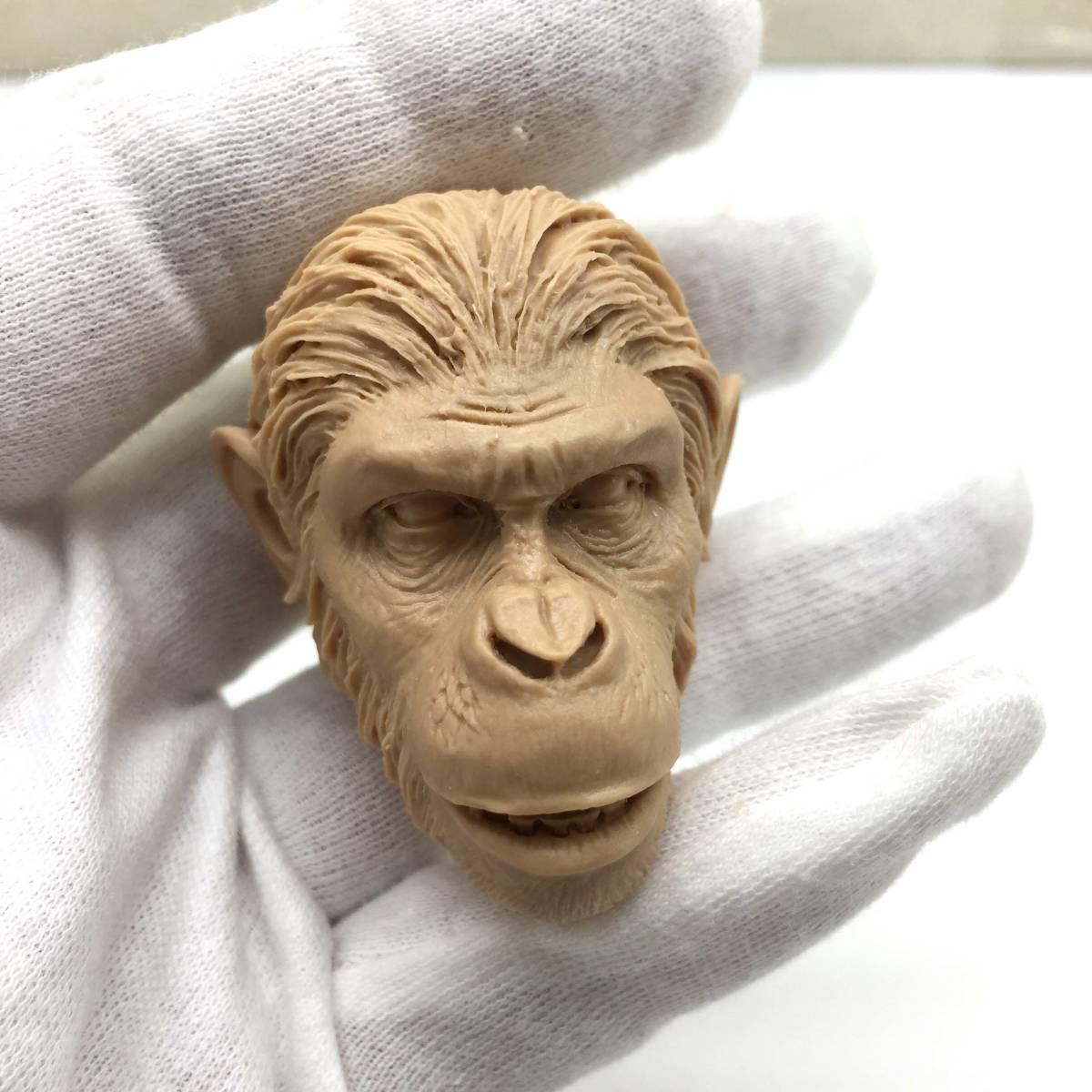 送料無料 1/6 DIY ヘッド 手作り 未塗装ヘッド 猿の惑星 番号B46_画像7