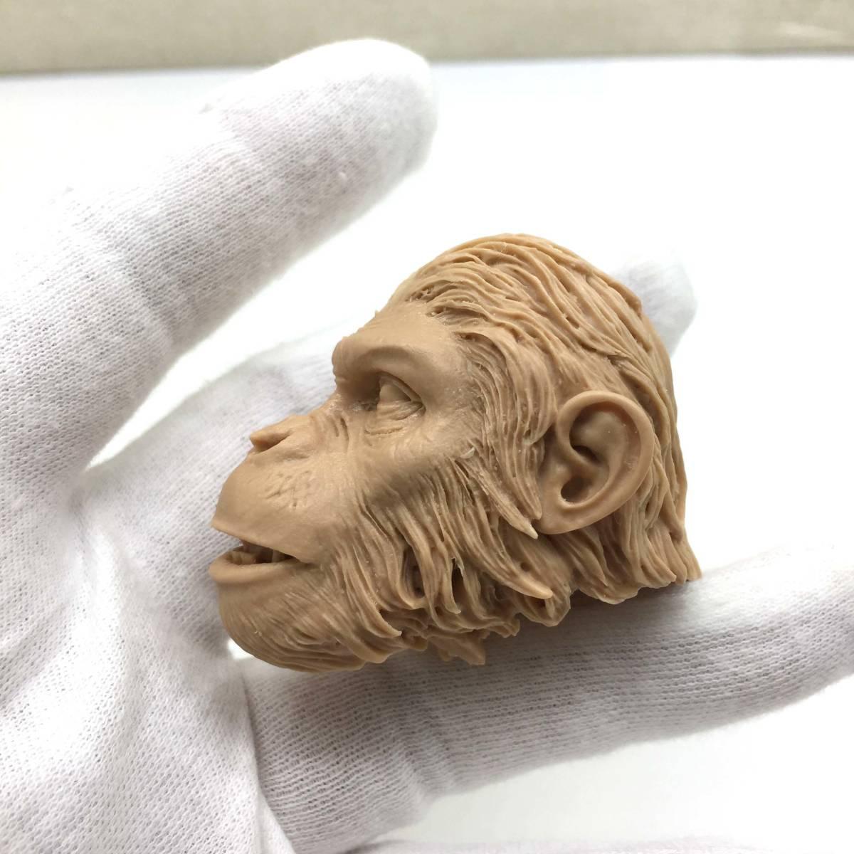 送料無料 1/6 DIY ヘッド 手作り 未塗装ヘッド 猿の惑星 番号B46_画像4
