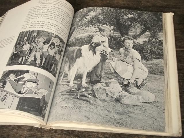 1969年 洋書 Pictorial History of Television テレビジョンの歴史 海外テレビ番組 TV放送 40s 50s 60s アメリカ レトロ ビンテージ 古写真_画像7