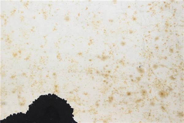 【華】大幅書 山形米沢の書家 宮島詠士 中国書法 合箱 〈真作〉 ウ2795_画像8