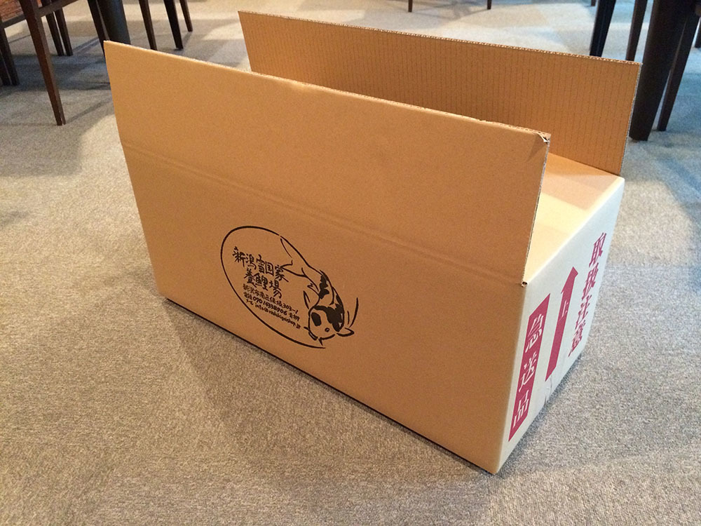 新潟雪国家養鯉場 【商品No605】 紅白3匹セット 34~35㎝ 生産者直送_画像4