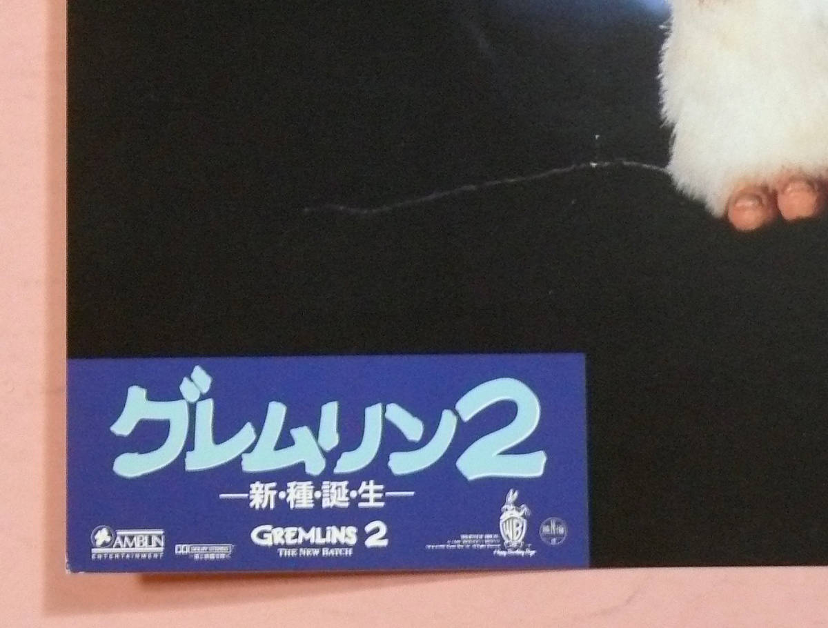 大判ロビーカード/モグワイ「グレムリン2-新・種・誕・生-」ジョー・ダンテ監督_画像3