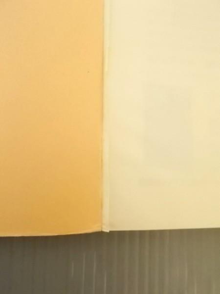 Ba2 00892 海辺の小石 つれづれの科学談話 昭和54年4月20日初版発行 著者:クライン・ユーベルシュタイン 発行所:株式会社朝日ソノラマ_画像4