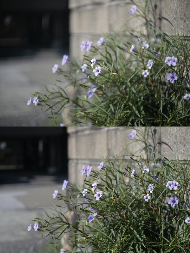 50mm F1.5 ズマリット製造番号なし 【珍品】(Summarit f=5cm 1:1.5 Ernst Leitz GmbH Wetzlar) Lマウント標準レンズ_画像10