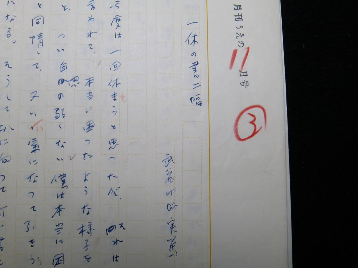 武者小路実篤 肉筆原稿 「一休の書二幅」 11枚完_画像2