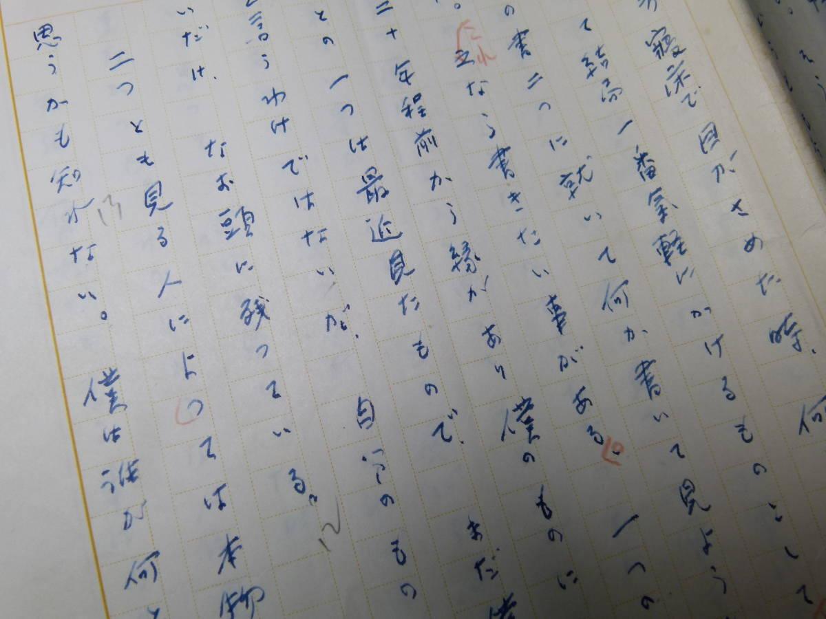 武者小路実篤 肉筆原稿 「一休の書二幅」 11枚完_画像3