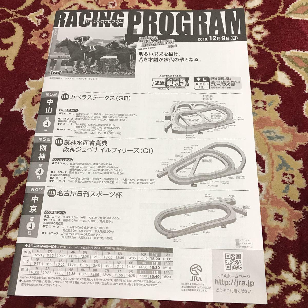 JRAレーシングプログラム2018.12月9日(日)阪神ジュベナイルフィリーズ(GⅠ)、カペラステークス(GⅢ)、名古屋日刊スポーツ杯_画像1