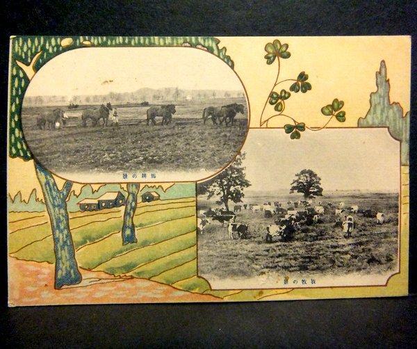 戦前 絵葉書 馬耕の景,放牧の景 北海道廳  / 北海道庁 農業 家畜 牛_画像1