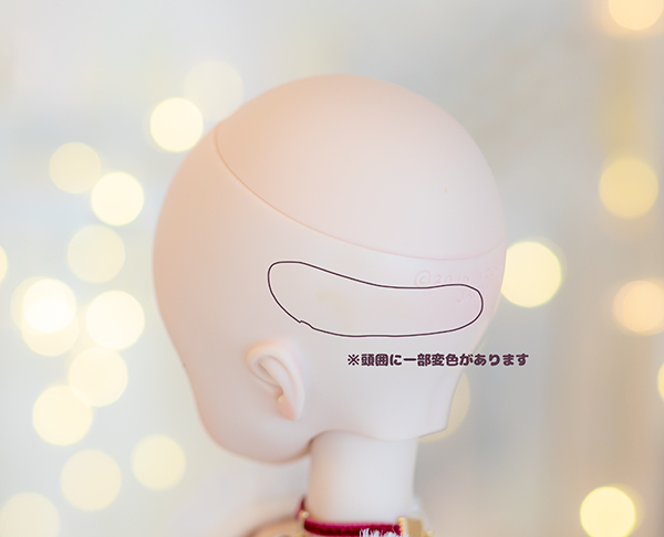 DDH-01 カスタムヘッド ノーマル肌 ~SnowPrincess Primula~(難あり)RonshukaCouture_画像9