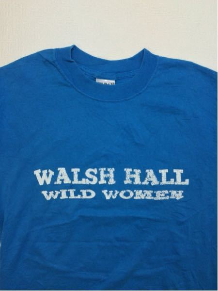 WalshHall/GILDAN(USA)ビンテージTシャツ
