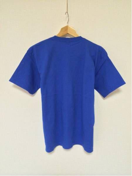 AmericanEagleFB/GILDAN(USA)ビンテージTシャツ