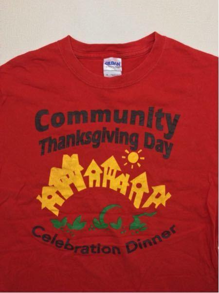 CommunityT.D./GILDAN(USA)ビンテージTシャツ