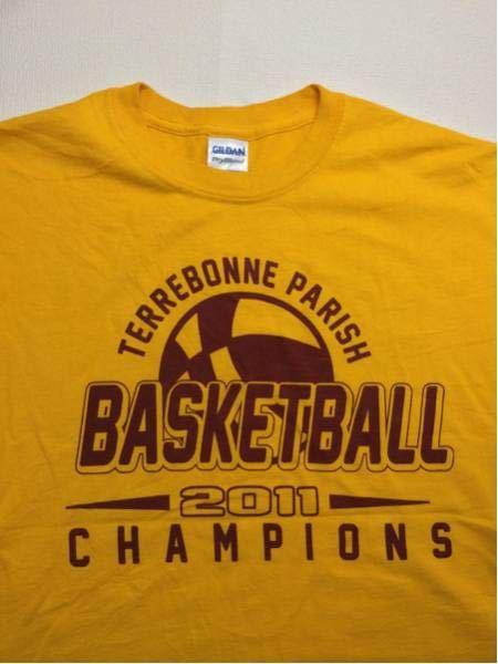 TerrebonneParish/GILDAN(USA)ビンテージTシャツ