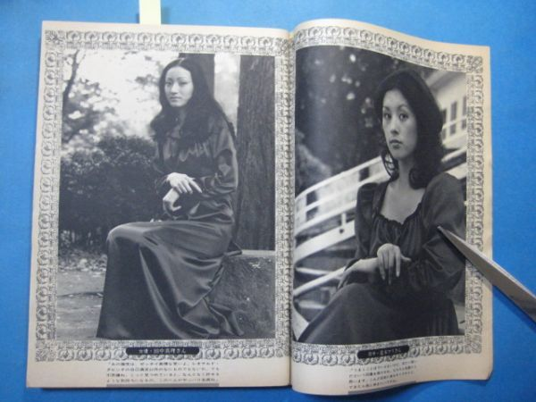 za1446週刊読売 1973年11.3 表紙:三田佳子 アン・ルイス 夏木マリ 仁科明子_画像4