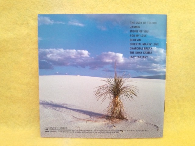 ナニワエキスプレス スカーレット・ビーム SCARLET BEAM NANIWA EXPRESS 32DH 349 浪速エキスプレス CD アルバム_浪速エキスプレス SCARLET BEAM 32DH 349