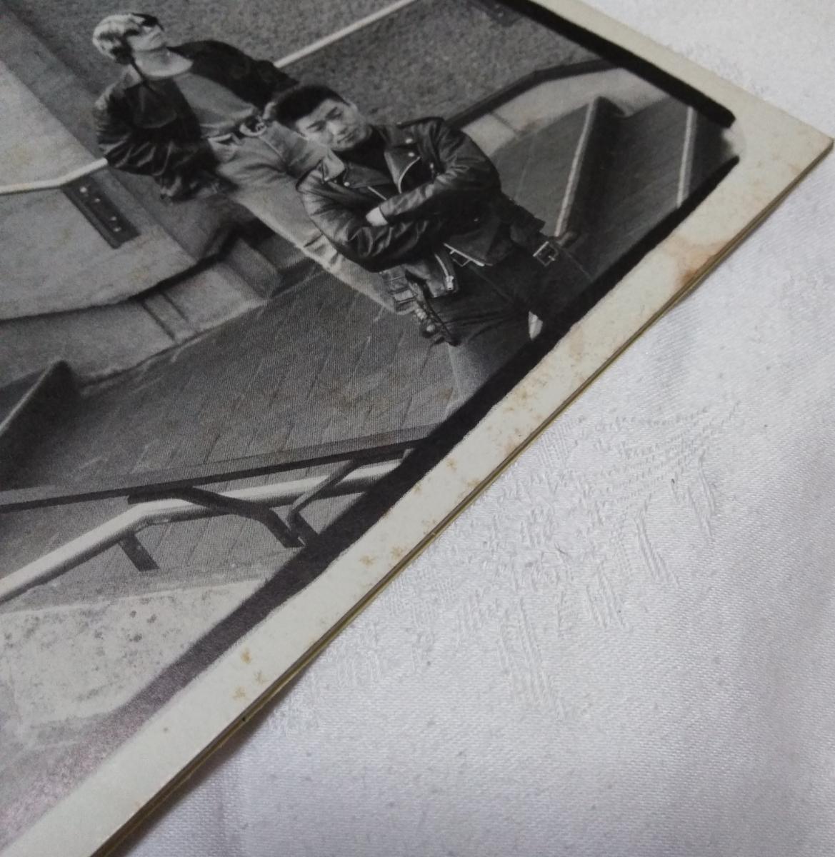 有頂天 公式ファンクラブ会報 シャイコナ vol.16&17 検/ケラリーノ・サンドロヴィッチ ナゴム 劇団健康_画像4