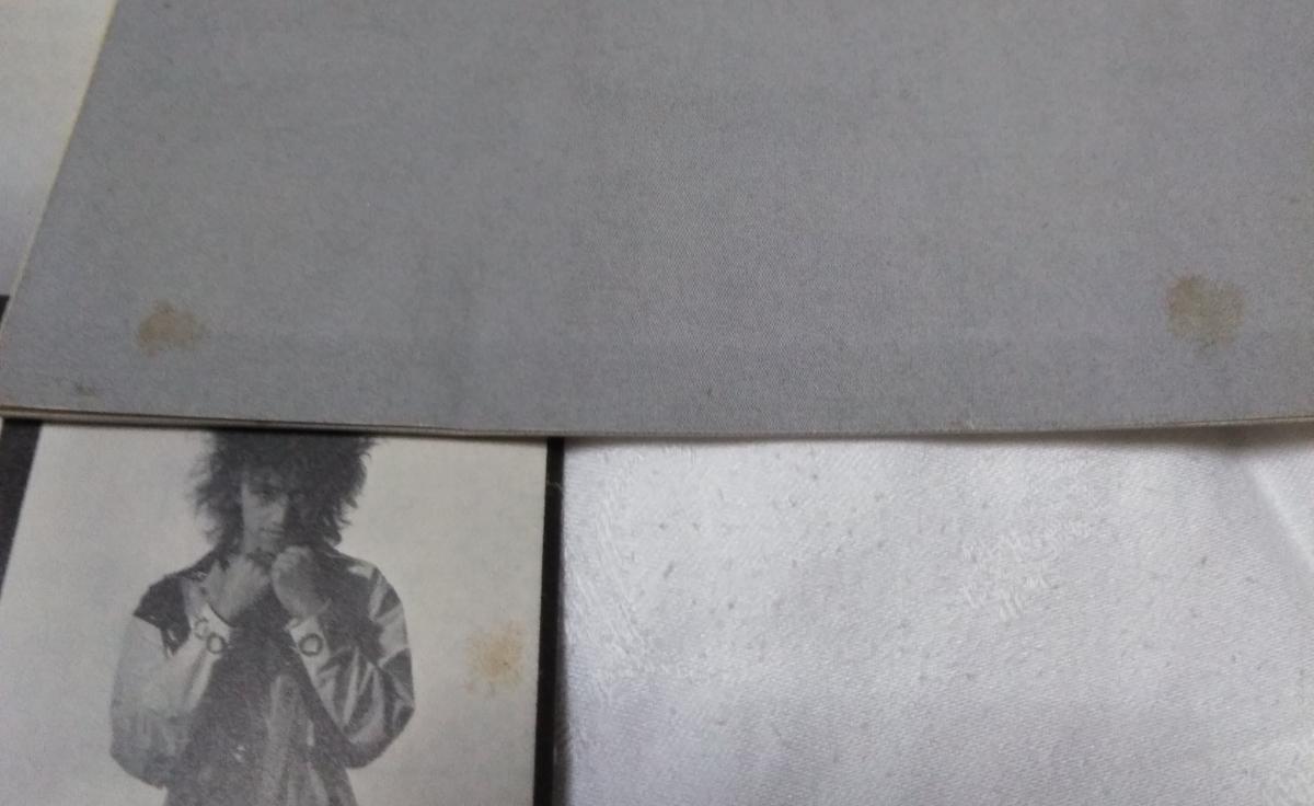 有頂天 公式ファンクラブ会報 シャイコナ vol.16&17 検/ケラリーノ・サンドロヴィッチ ナゴム 劇団健康_画像5