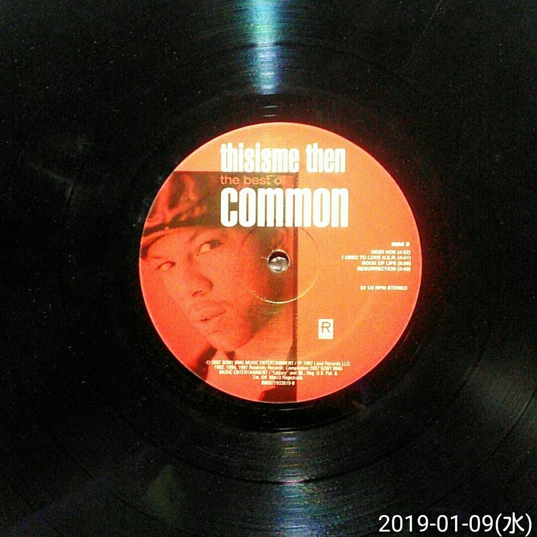 us盤見開きジャケ2LP COMMON / thisisme then the best of COMMON_画像6