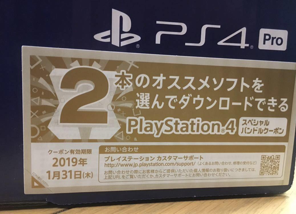ヨドバシお年玉箱 PS4 pro本体+ソフト5本 78,000相当_画像3