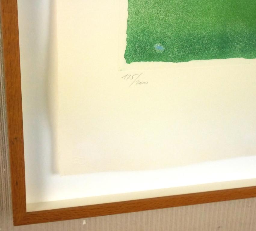 イウジェニオ・カルミ『抽象』◆銅版画◆直筆サイン有◆限定200版!イタリア人気作家!独自の世界観!額装_画像4