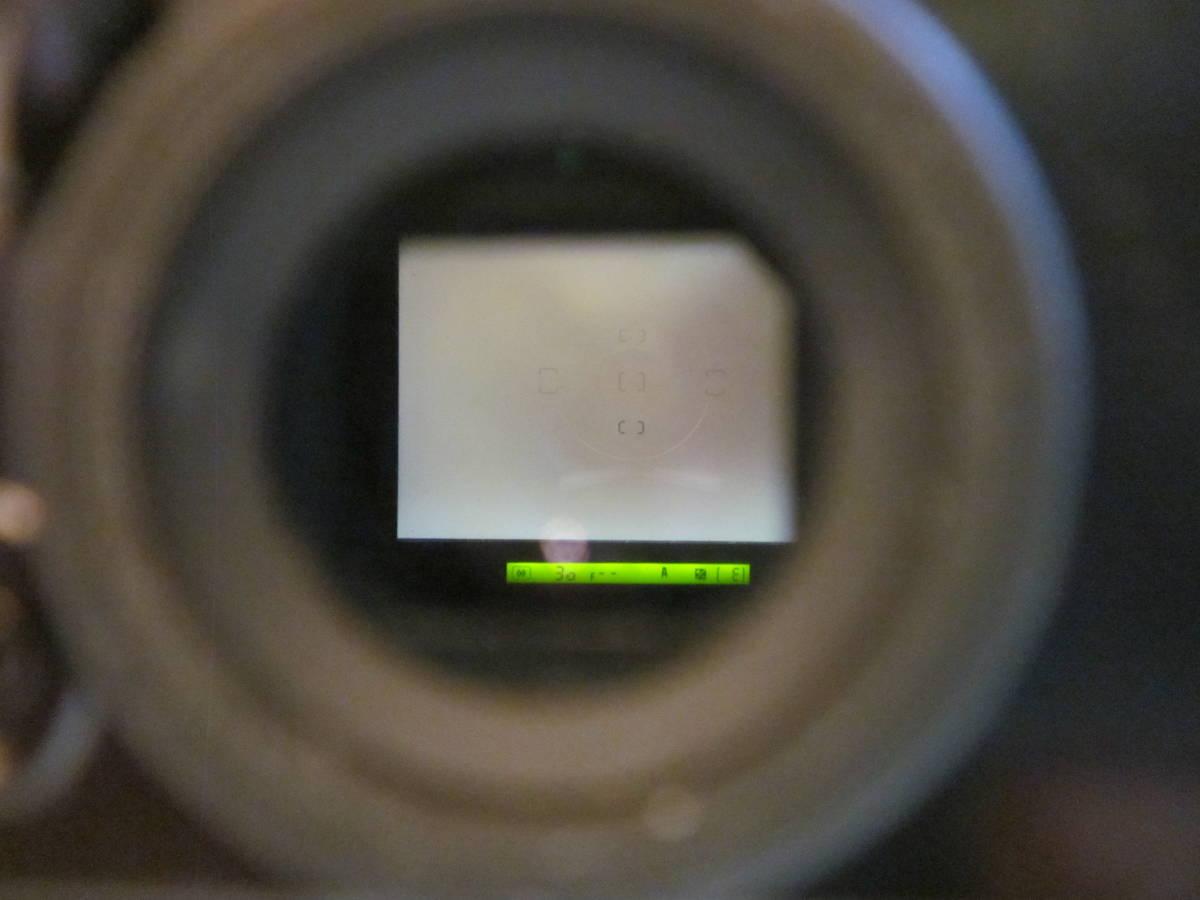 Nikon ニコン F5 + AF NIKKOR 80-200mm F2.8フィルムカメラ _画像10
