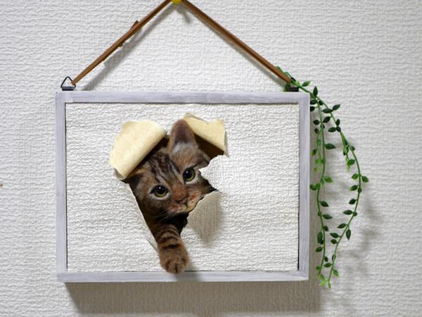 ★銀★ 羊毛フェルト 猫 ハンドメイド キジトラ猫 壁から覗く猫 壁掛け _画像2