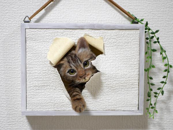★銀★ 羊毛フェルト 猫 ハンドメイド キジトラ猫 壁から覗く猫 壁掛け _画像8