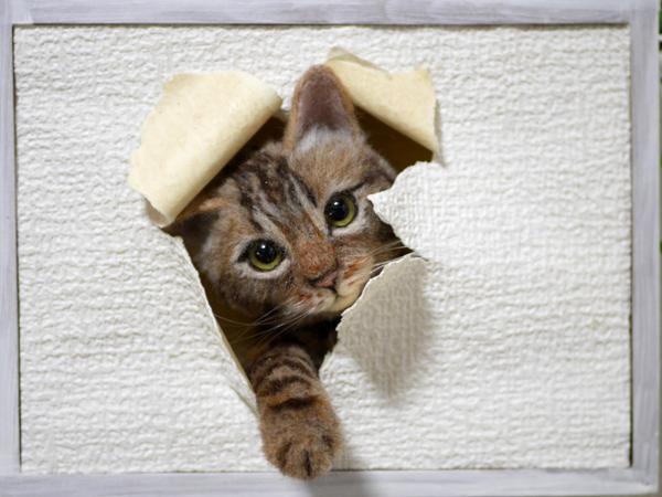 ★銀★ 羊毛フェルト 猫 ハンドメイド キジトラ猫 壁から覗く猫 壁掛け