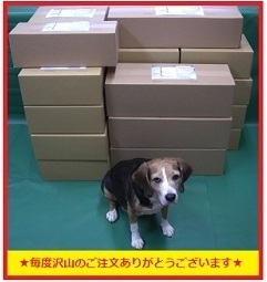 【日本製】座面ディンプル■GPZ750R/GPZ900R カスタム シート表皮 シートカバー ノンスリップ ピースクラフト KK_画像9