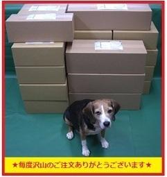 【日本製】◆グラストラッカー/ビッグボーイ カスタム シートカバー シート表皮  ピースクラフト DD_画像10