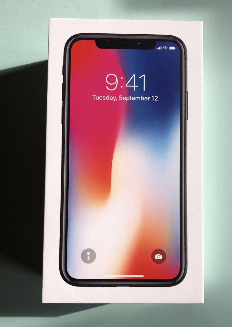 iPhone X Space Gray 256 GB 空箱 未使用付属品_画像2