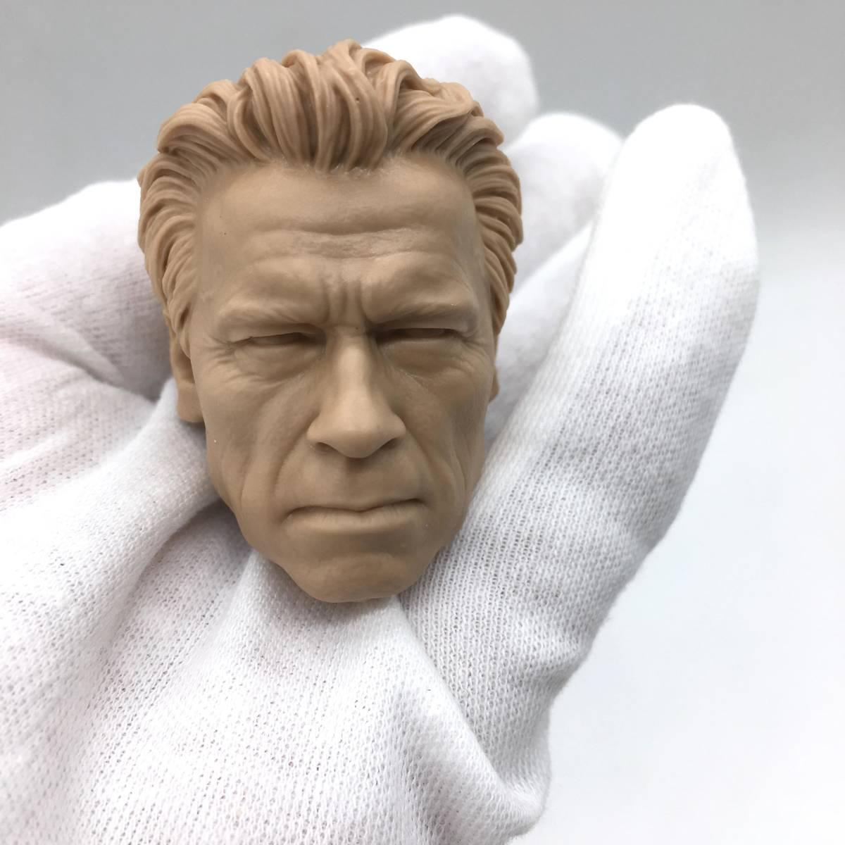 送料無料 1/6 DIY ヘッド 手作り 未塗装男性ヘッド アーノルド・シュワルツェネッガー -a 番号B35_画像1