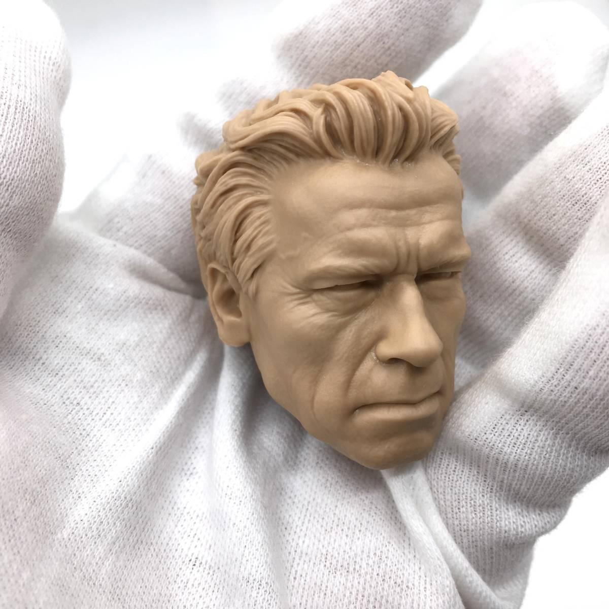 送料無料 1/6 DIY ヘッド 手作り 未塗装男性ヘッド アーノルド・シュワルツェネッガー -a 番号B35_画像7