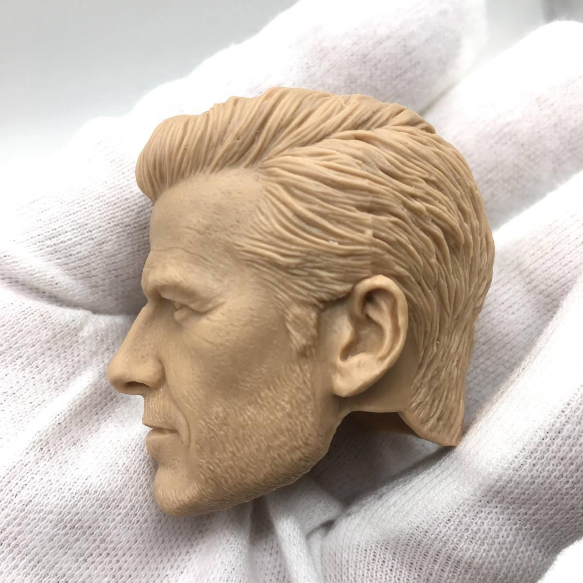 送料無料 1/6 DIY ヘッド 手作り 未塗装男性ヘッド デビッド・ベッカム 番号B32_画像3