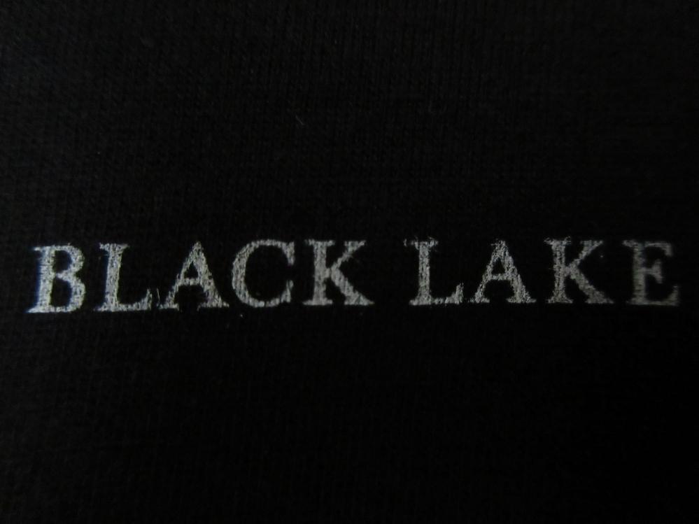 USA製 Bjork MoMA ビョーク 回顧展 Black Lake 楽譜 Tシャツ S 黒 芸術 Vulnicura ヴァルニキュラ 芸術 ART モマ 美術館 The Sugarcubes_画像6