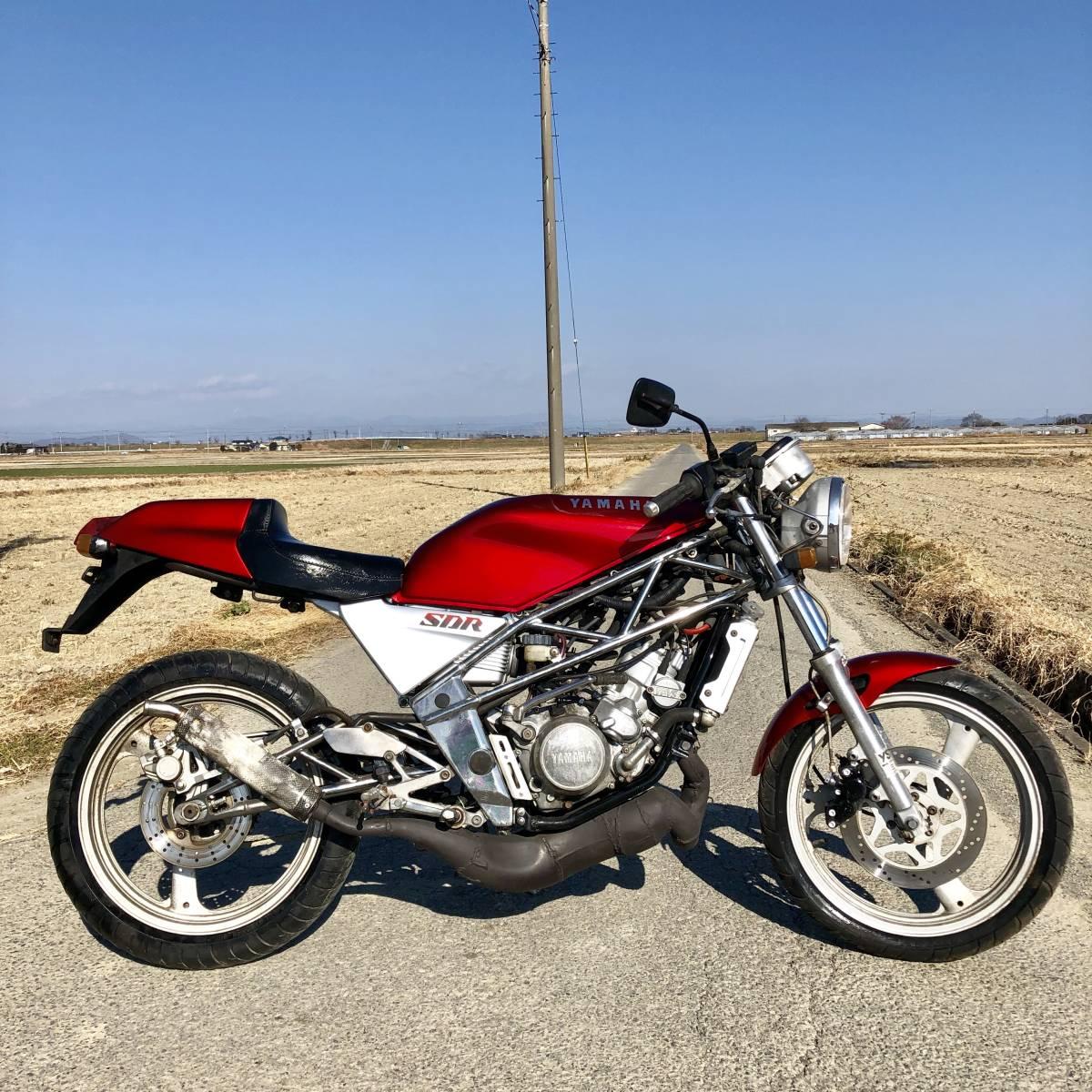ヤマハSDR200 好調 2スト人気 改 希 少売り切り ホンダスズキカワサキ検)NS TZ MVX VT FW FZR RG R1Z CBR RZ GT NSR TS KR_画像7