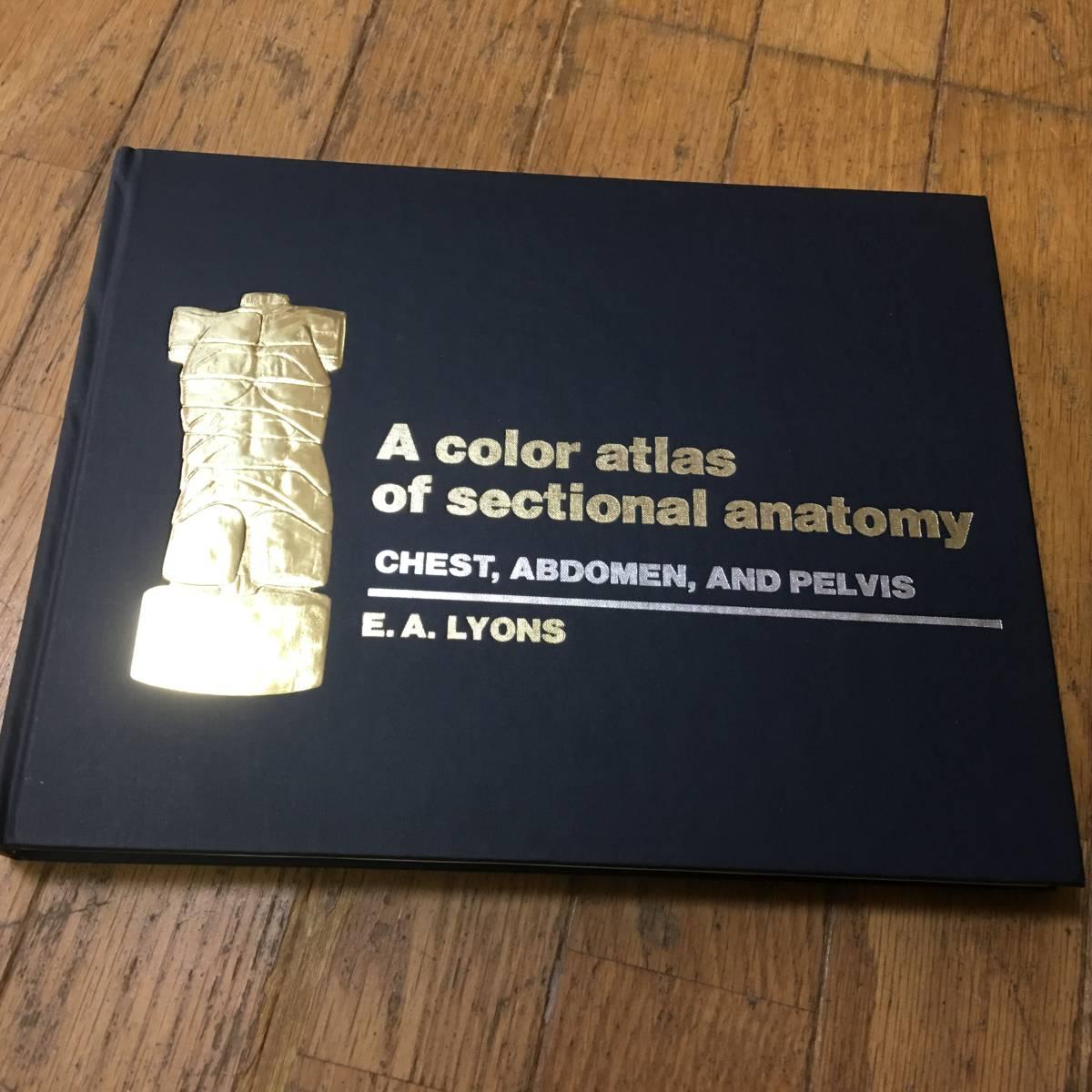 即決 A color atlas of sectional anatomy 医学洋書・大型本
