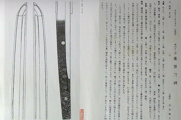image principale de l'article