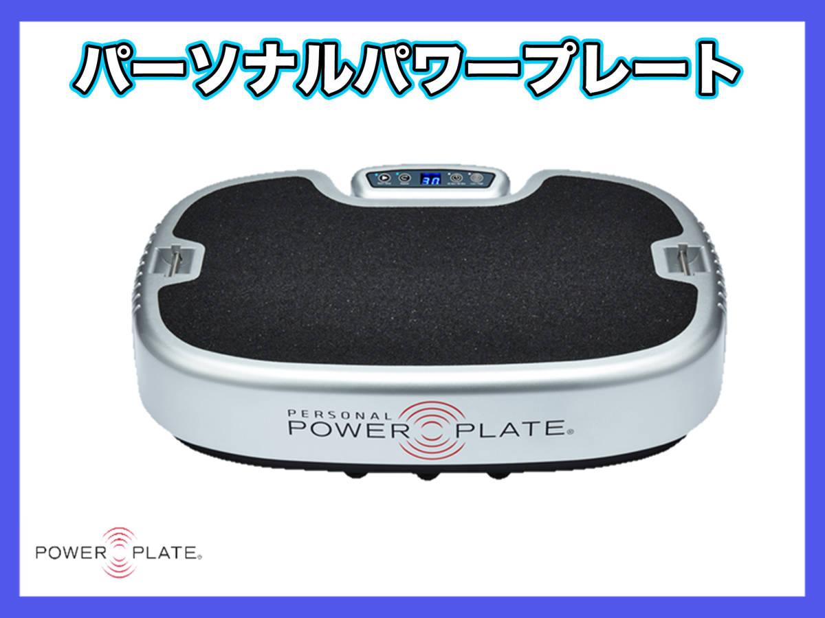 パーソナルパワープレート Personal Power Plate シルバー トレーニング ストレッチ マッサージ 取説バッグ 3次元ハーモニック振動 2回使用_画像1