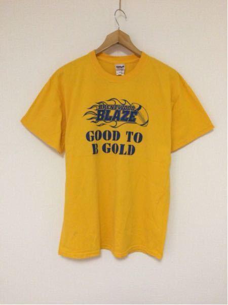 BRENTWOOD BLAZE/GILDAN(USA)ビンテージTシャツ
