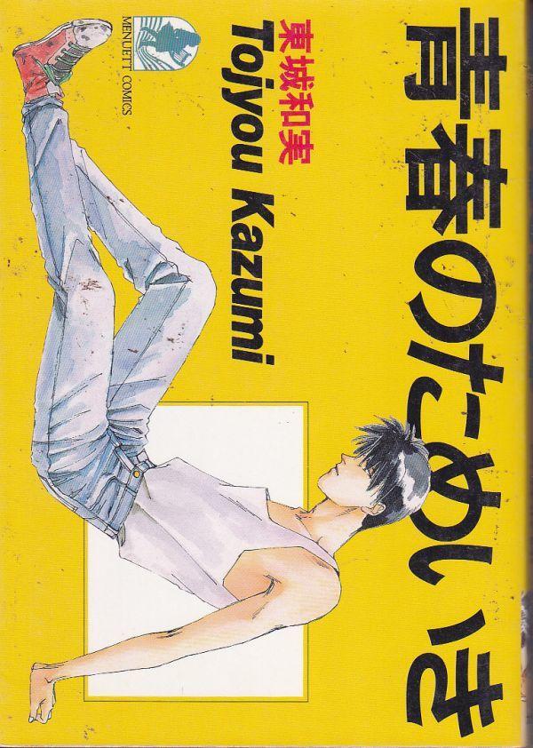 【女性コミック】青春のためいき 東城和実_画像1