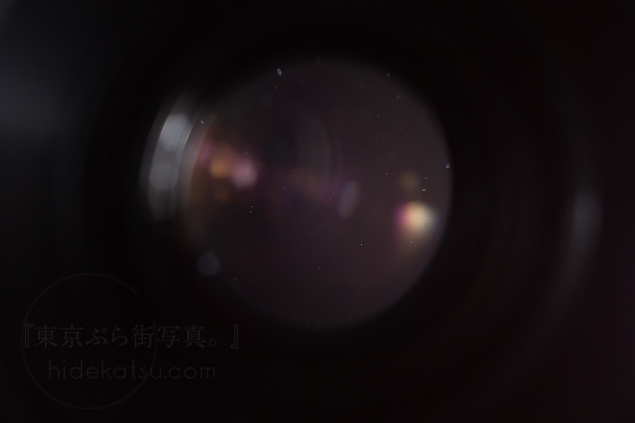 銘玉フレクトゴン 35mm ゼブラ ケース付き【分解清掃済み・撮影チェック済み】Carl zeiss jena / Flektogon F2.8 35mm M42_52f_画像8