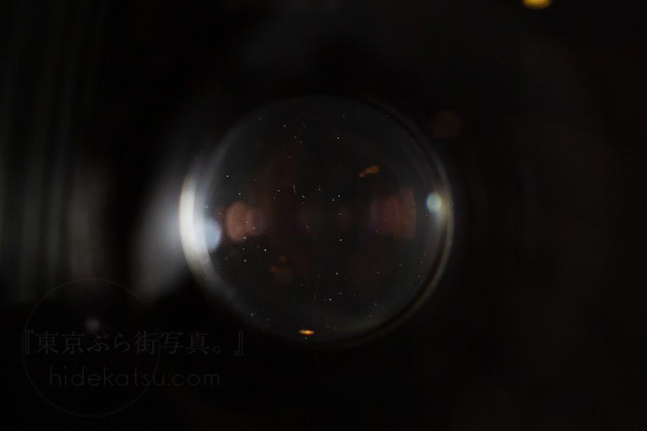 銘玉フレクトゴン 35mm ゼブラ【分解清掃済み・撮影チェック済み】Carl zeiss jena / Flektogon F2.8 35mm M42_54f_画像7