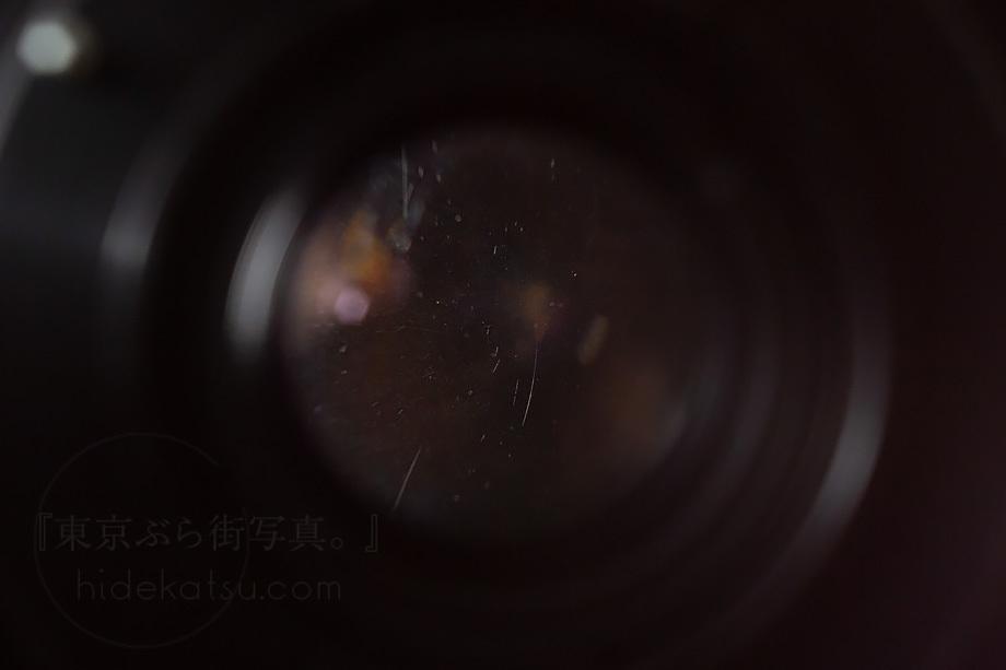 銘玉フレクトゴン 35mm ゼブラ【分解清掃済み・撮影チェック済み】Carl zeiss jena / Flektogon F2.8 35mm M42_54f_画像8